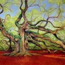 Johns island's Majestic Angel Oak