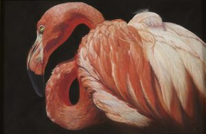 Flamboyant - Pastel 11 x 16
