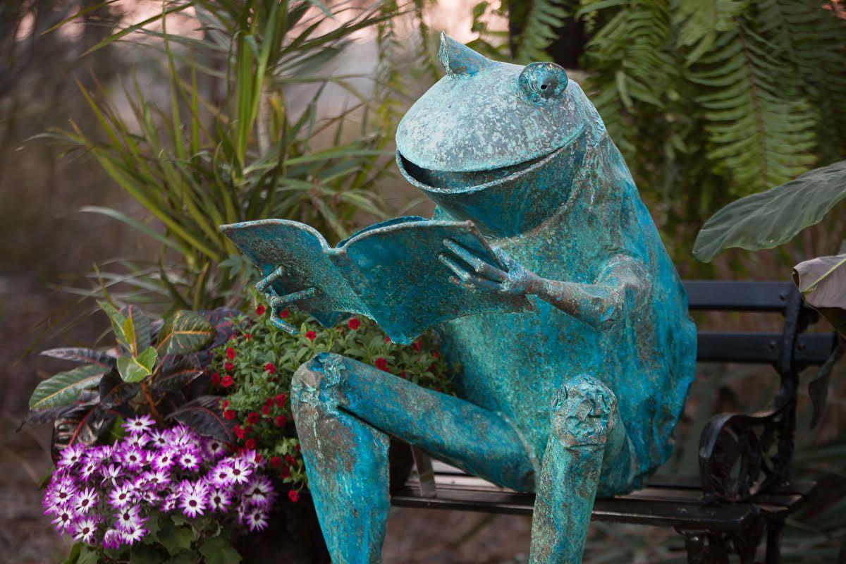 Zan Smith, Reading Frog