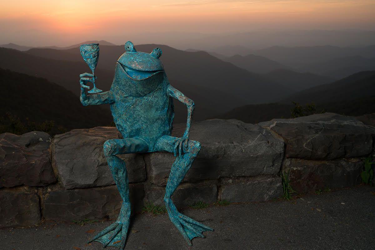 Zan Smtih, Toasting Frog