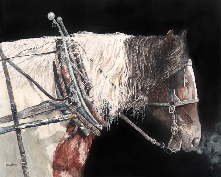 Sandra Roper, Portrait of a Work Horse, Watercolor