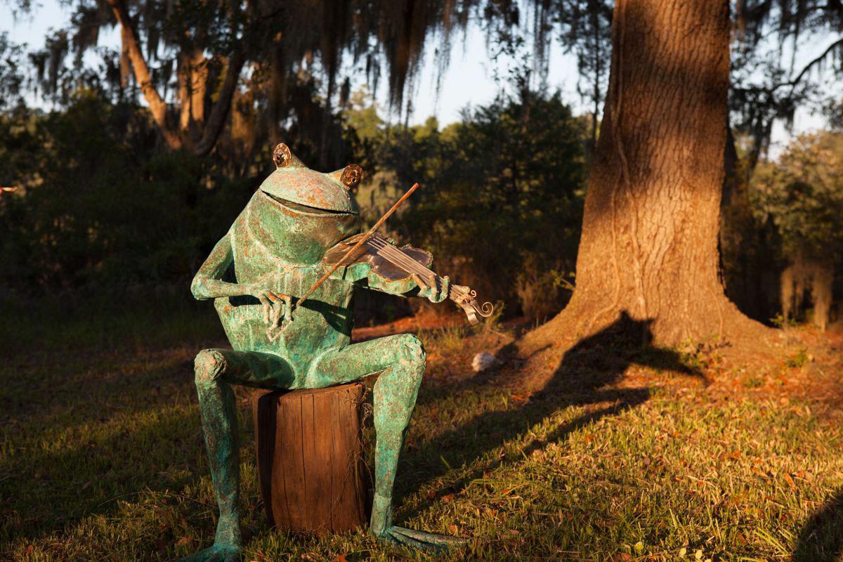 Zan Smith, Fiddle Frog