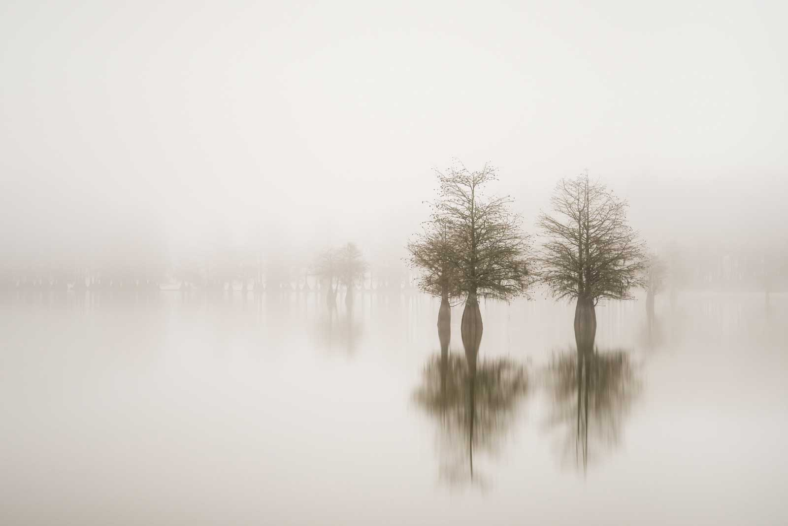 Ivo Kerssemakers, Isolated III, Limited Edition, up to 72x40