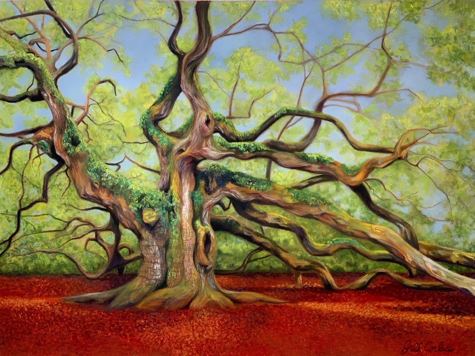 Jill Corless, John's Island Majestic Angel Oak