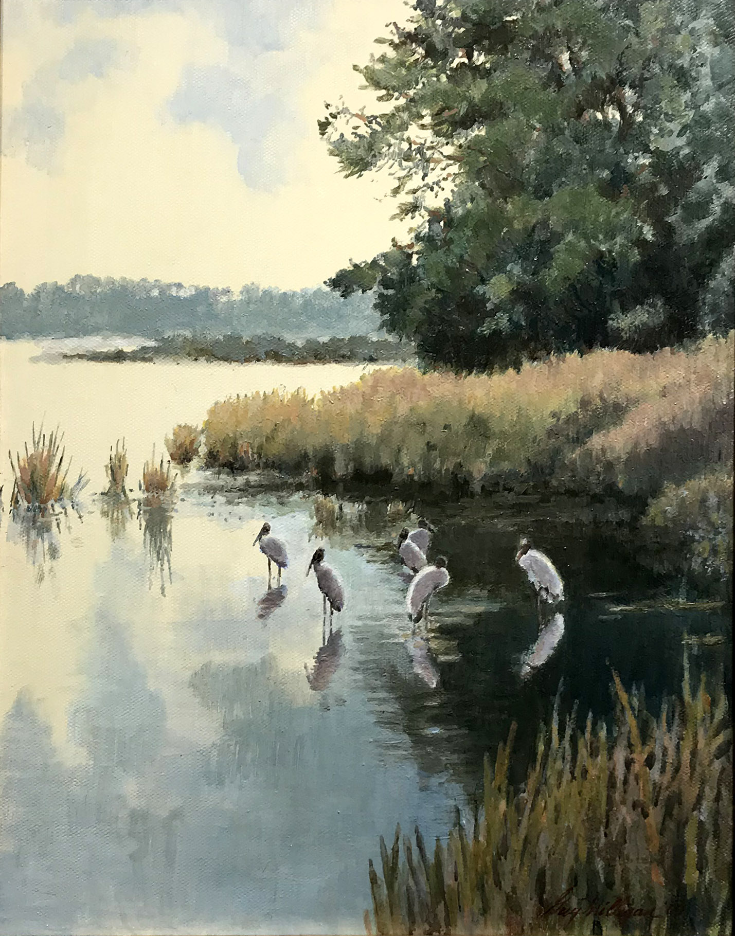 Guy Mulligan, Woodstorks in Marsh