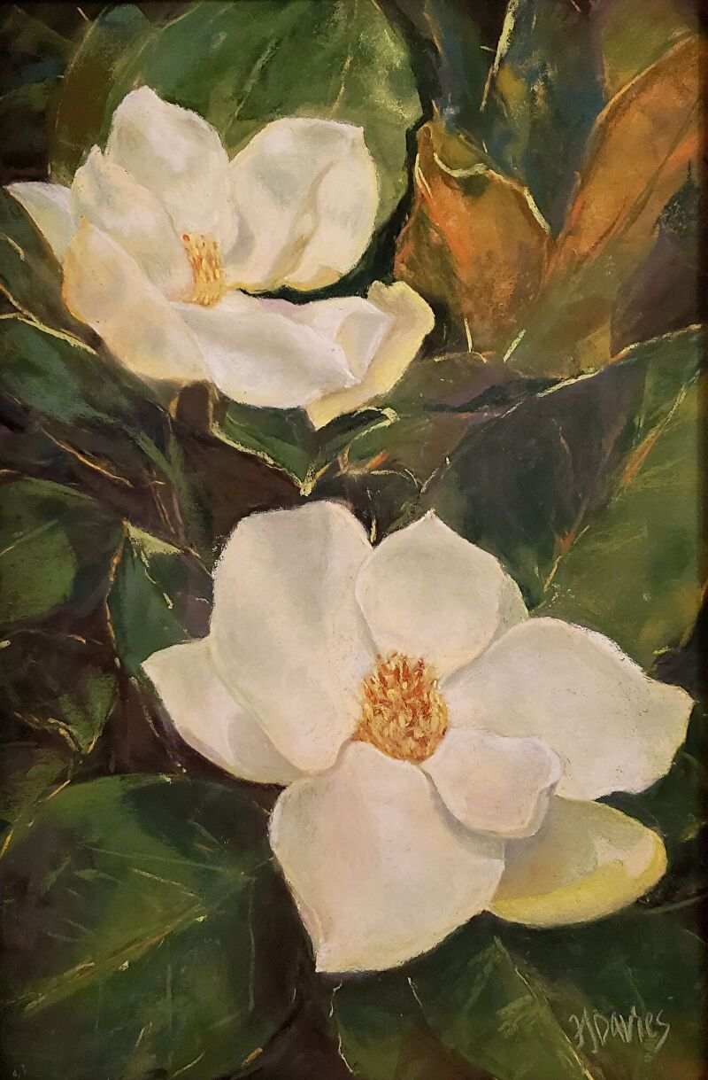Fran Davies, Carolina Magnolias